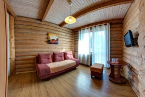 Two-room suite in a log house